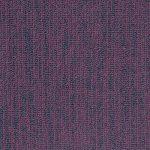 1547222432_106 - Grape